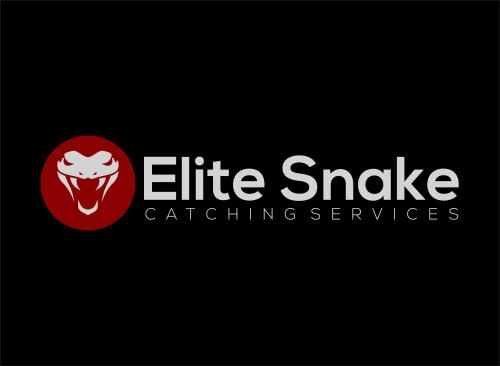 Brisbane Snake Catchers