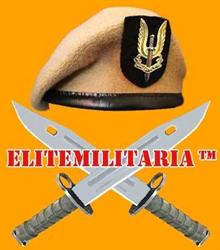 Elitemilitaria Military Antiques