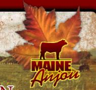 Canadian Maine-Anjou Association