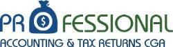 Professional Accounting & Tax  Returns CGA