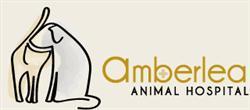 Amberlea Animal Hospital - Veterinary Clinic
