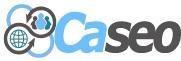 Caseo LTD - Burlington SEO Company