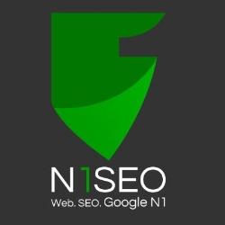 N1 SEO Agentur Bonn - Webdesign Bonn