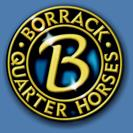 Borrack Quarter Horses