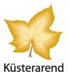 Küsterarend Garten- U. Landschaftsbau