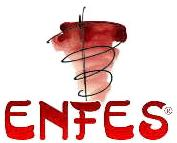 ENFES GmbH