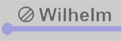 Wilhelm Mikroelektronik GmbH