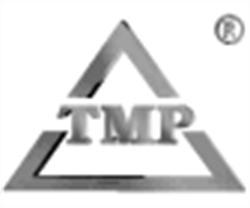 Tmp Team - IT-/ Innovationsberatung