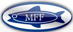 Mecklenburger GmbH
