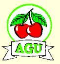 Agu Kirschen