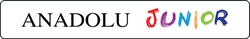 Schulbuchverlag Anadolu GmbH