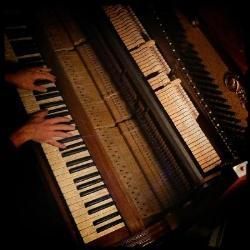 Arian Stechert | Klavierbaumeister und Klavierstimmer in Berlin