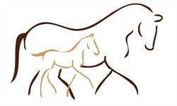 Pferdezucht-Perle