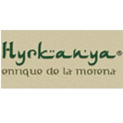 Ringcentral E Hyrkanya