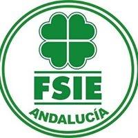 FSIE - Federación de Sindicatos Independientes de Enseñanza de Andalucia