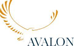 Avalon Investment Services Ltd