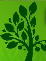 Evergreen Landscaping Ltd