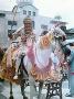 Asian Wedding Horses UK