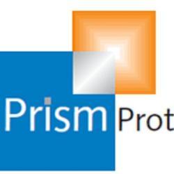 Prism Protection Ltd