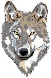 Lone Wolf Bookkeeping