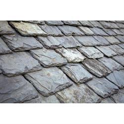 Wilkins Roofing