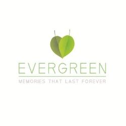 Evergreen Memories