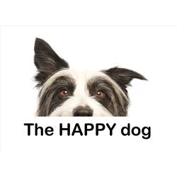 The Happy Dog
