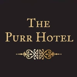 The Purr Hotel