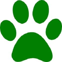 Perfect Pet Services - Perfect Doggy Daycare & Grooming Centre