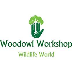 Woodowl Workshop