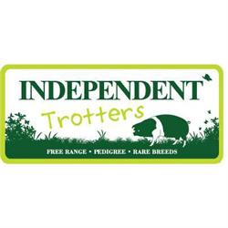 Independent Trotters