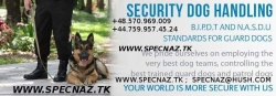 Bodyguard Services London Uk-Hire-Close Protection-Companies-Agencies-Firms-Vip Security