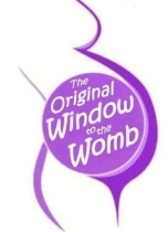 THE ORIGINAL WINDOW TO THE WOMB LIMITED