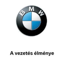 BMW Glass