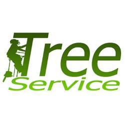 TREE SERVICE kft. - Favágás alpintechnikával