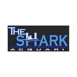 The Shark Acquari