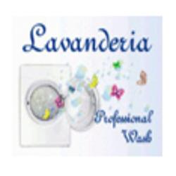 Lavanderia Professional Wash