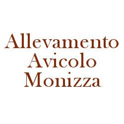 Allevamento Avicolo Monizza Giovanni & Figli