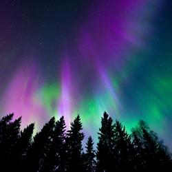 Northern Lights Insurance Agency