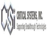 Critical Systems Inc