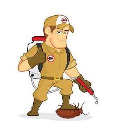 Able Termite & Pest Control