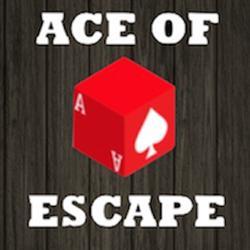 Ace of Escape - Tucson Escape Room