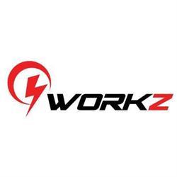 9Workz Inc