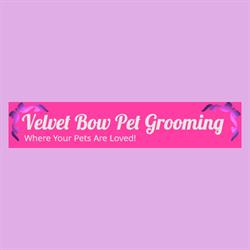 Velvet Bow Pet Grooming Eastside
