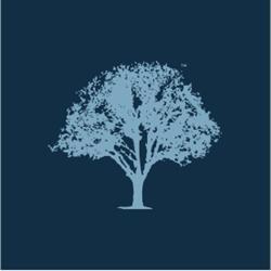 Lifetime Insurance Services, Inc.