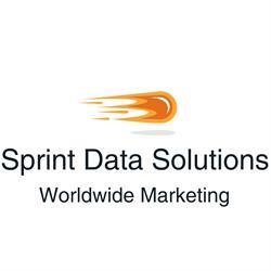 Sprint Data Solutions Worldwide Marketing