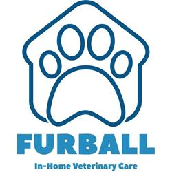 Furball Pet Care