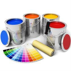 S A Paint Pro's