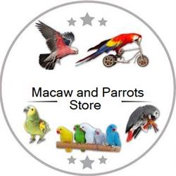 Macaws and Parrots Store